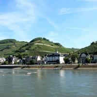 Rhine II